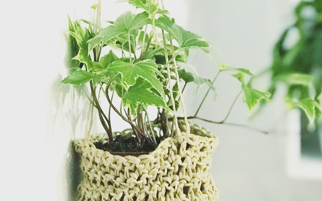 Small Crochet Hanging Basket Free Pattern