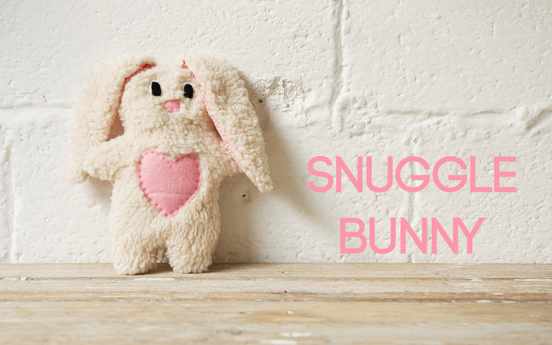 How to Make a Snuggle Bunny Video